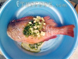 червона риба, натерта зеленню